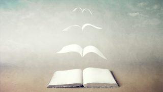 book 4 320x180 - 2019年Webデザインの勉強に役立つ書籍・本