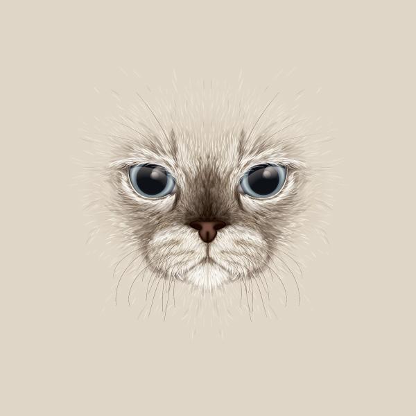 large face cat illustration - Adobe Illustratorのチュートリアルの一覧まとめ