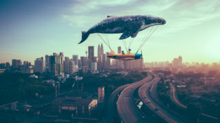 sky whale 320x180 - クラウド会計・確定申告ソフトの選び方「freee・Money Forwardクラウドの特徴・比較」