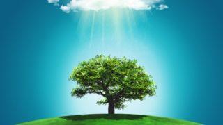 tree cloud rainbow 320x180 - デザイン性が高くお洒落な無料(フリー)のイラスト素材サイト・サービスまとめ